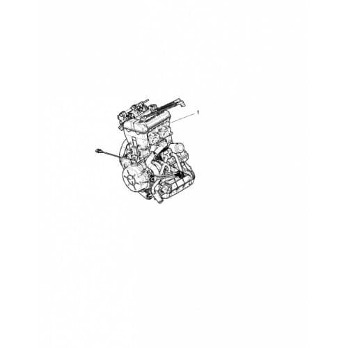 Двигатель оригинальный для Polaris RZR 1000 2205247